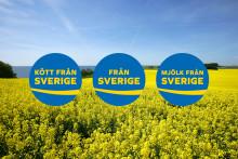 Svenskmärkning växer snabbare än väntat – sänker licensavgiften