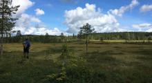 Värmland har fått sitt 200:ade naturreservat