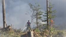 Så kan skogsbränderna begränsas