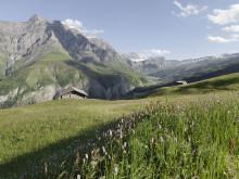 Abgelegene Täler in Graubünden: Murmeltierpfade, Säumerwege und eine Sackgasse