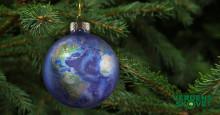 Kære ven og støtte af skoven: Glædelig og godt nytår fra Verdens Skove