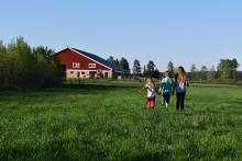 MinGård™ managementsystemet för mjölk- och köttföretagare