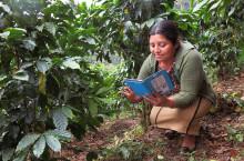 Rainforest Alliance lanserar app för att sprida klimatsmarta odlingsmetoder