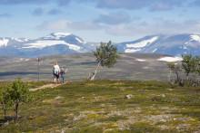 Destination Funäsfjällen beviljade projektmedel om ca 35,6 miljoner för utveckling av spår och leder