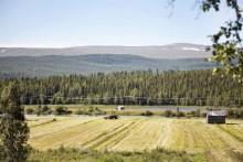 Priset på åkermark har ökat
