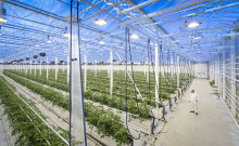 Mittuniversitetet och Härnösands kommun vill utveckla en hållbar livsmedelsindustri