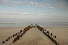 """Initiative """"Inselfreund"""" startet mit Küstenschutz-Führungen"""