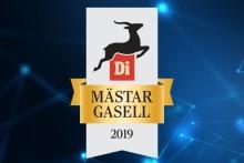 """Qamcom becomes a """"Master Gazelle"""""""