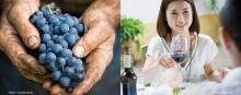 Der Beaujolais Nouveau erfreut Weinliebhaber in Japan