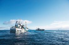 Norwegische Fischexporte nehmen mehr als doppelt so viel zu als in den vergangenen 10 Jahren