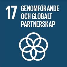 Genomförande och globalt partnerskap