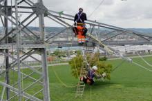 Netzausbau für erfolgreiche Energiezukunft