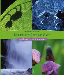 Naturen hjelper oss å bli mer bevisst våre følelser