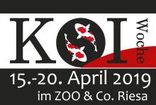 Goldfische und Kois im Einsatz für Bärenherz: Zoo & Co. Riesa unterstützen mit einer Spendenaktion das Kinderhospiz