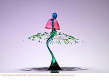 Sony World Photography Awards 2012: Die Besten der Besten stehen fest