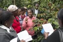 Kvinnligt entreprenörskap inom kaffenäringen förbättrar lokala samhällen