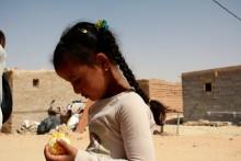Västsahara i Almedalen: Handel före folkrätt?