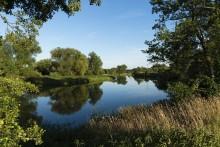 """""""Time for Nature"""": Veolia unterstützt den internationalen Tag der Umwelt 2020 mit verschiedenen Aktionen"""