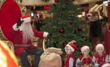 """""""Vi ska tillverka 25 000 marsipangrisar innan julafton…"""" – klassiska Bräutigams på plats när Kungsmässan inviger julen"""