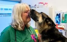 Kullabygdens Smådjursklinik går med i Evidensia