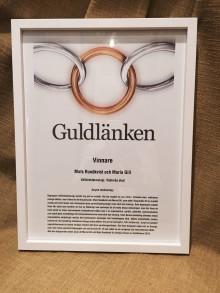 Västeras stads satsning på välfärdsteknologi prisades med Guldlänken