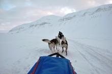 Bedre snøskredsvarsling på Svalbard