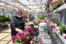 Hephata-Gärtnerei gewinnt Umweltpreis