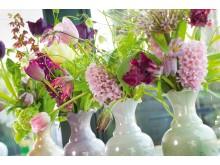 Blommande vårlök