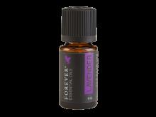 Essential_Oil_Lavender