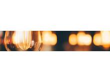 Large-Light-Bulb