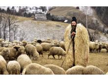 Shepherd from Transylvania