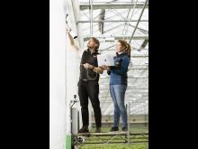 Installation av kameror i växthusen