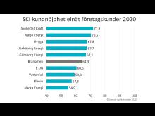 SKI elnat foretag 2020.jpg