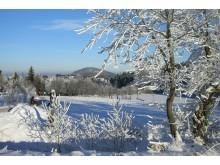 Blick auf die winterliche Sportstadt Altenberg