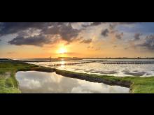 Dollern: Utsikt over vadehavet i solnedgangen; Niedersachsen nasjonalpark Vadehavet