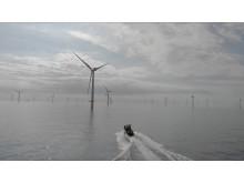 Twin OXE windfarms
