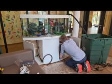 Buntes Aquarium im Kinderhospiz erfreut Kinder, Gäste und das Bärenherz-Team