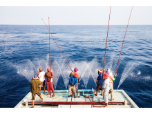 Pole and line fishing maldives group.jpg