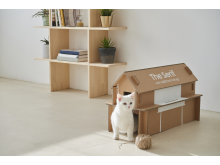 Eco-Packaging-for-Lifestyle-TV-Lineup_4