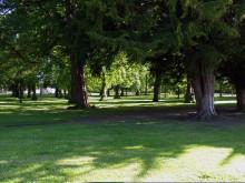 Moray Cooper Park
