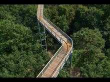 Baumkronenpfad Beelitz