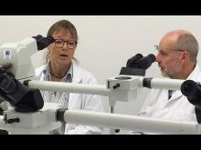 Alzheimerbild Elisabet Englund diskuterar med Lars Dahlin 900 (2).jpg