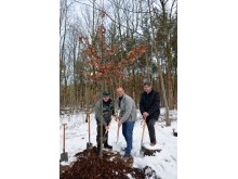 """Zur Eröffnung des Aktionsjahres """"Waldgebiet des Jahres 2018"""" wurde im Wermsdorfer Wald eine Eiche gepflanzt"""