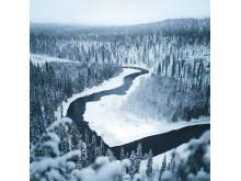 Alphaddicted_Lappland_01