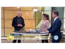 Daniel-i-TV4