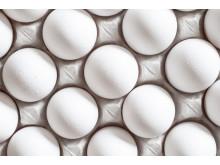 Ägg i äggkartong