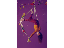 Bloom - Cirkus Cirkör