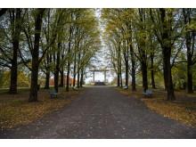Torshovparken i Oslo. Landskapsarkitekt Eyvind Strøm.