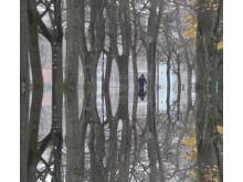 """Stillbild från videoverket """"Efter sju heta somrar kom regn"""" av Anders Rönnlund"""