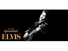 Elvis_Rockgiganter og Mikrobryg på RAGNAROCK. Kredit Callu Ramsay_pixabay.com